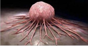 Câncer não é doença
