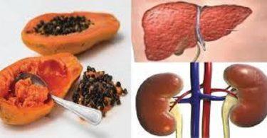 Desintoxicar o fígado e os rins