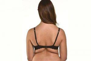 Gordura costas