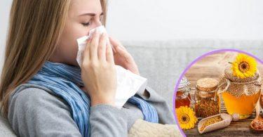 Própolis, gripe e resfriado